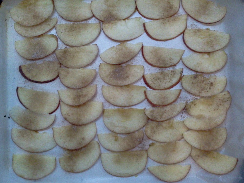 Apple_chips4