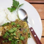 Baked Curry Fish Fillets + Reliving the intensity of India