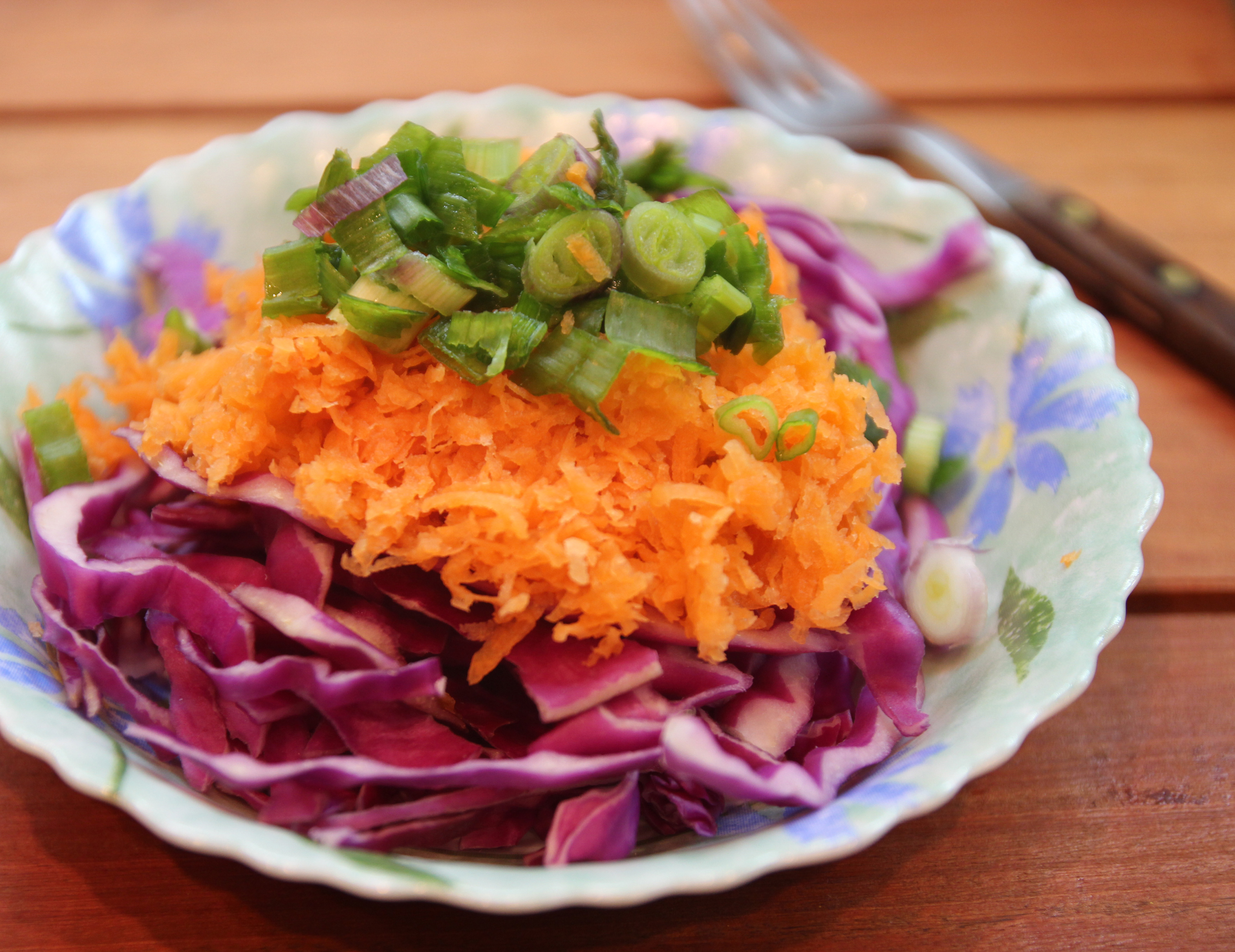 Spring Onion, Red Cabbage  Carrot Salad + A surprise visit