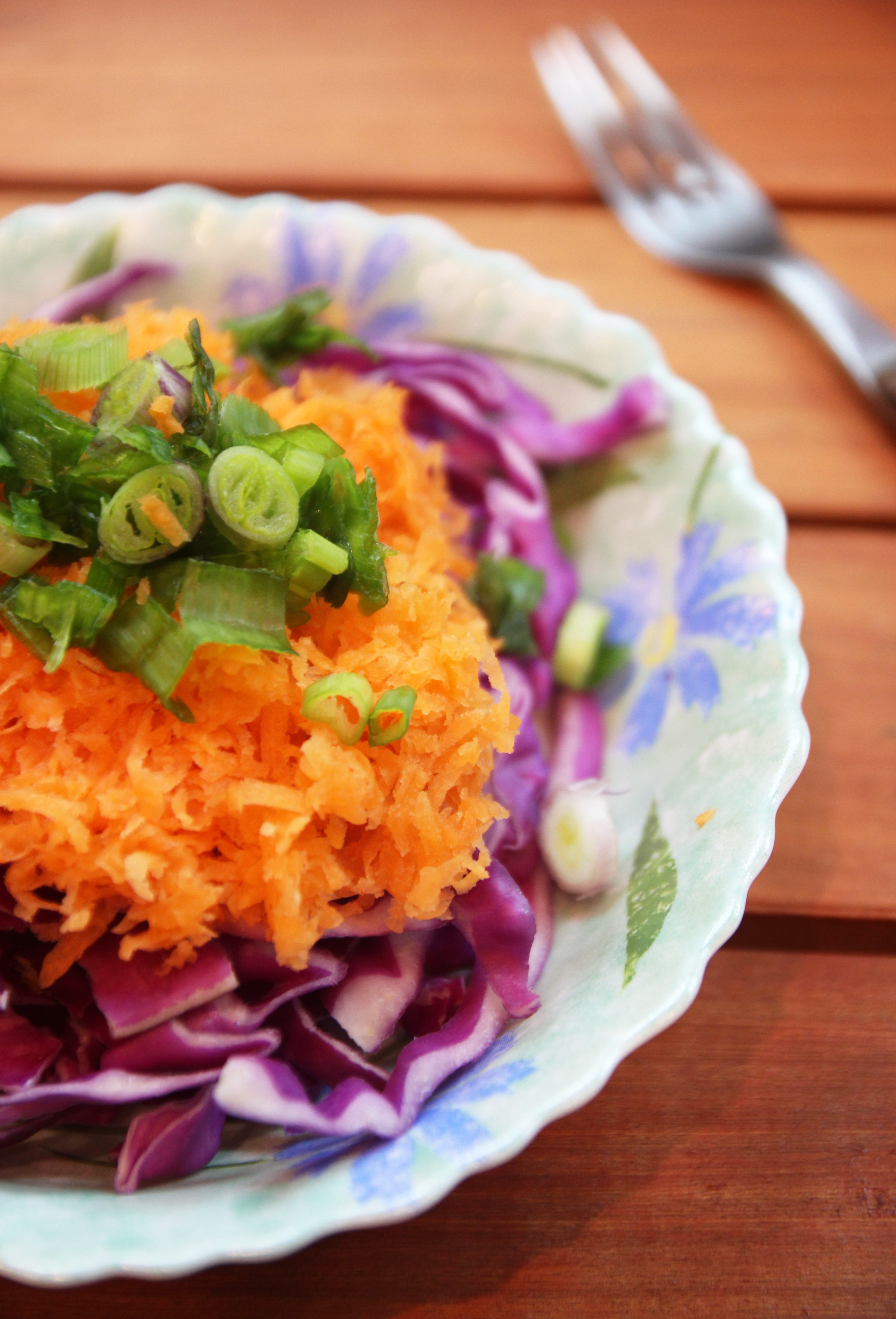 Spring Onion, Red Cabbage & Carrot Salad5