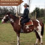 Horseriding at Caballos A La Par