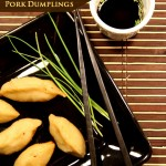 Chinese Pork Dumplings + The effect of food on culture