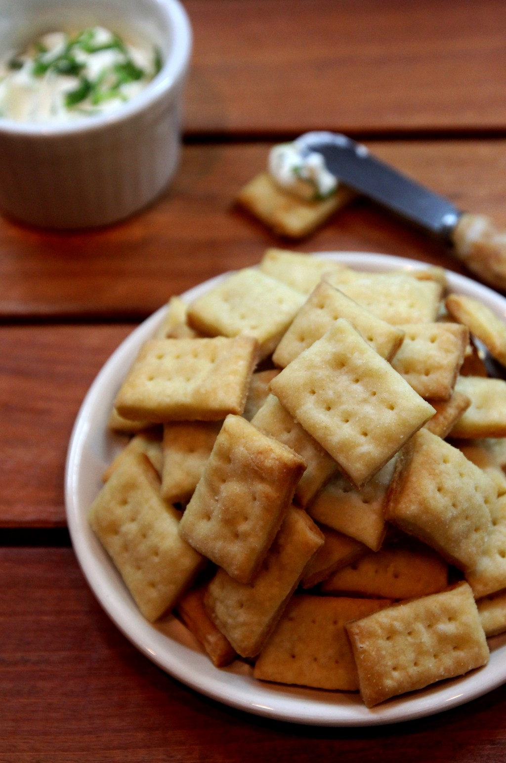 Parmesan Cream Crackers10