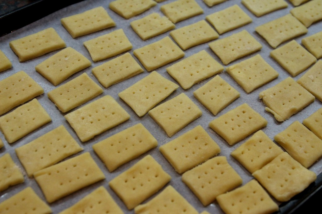 Parmesan Cream Crackers4