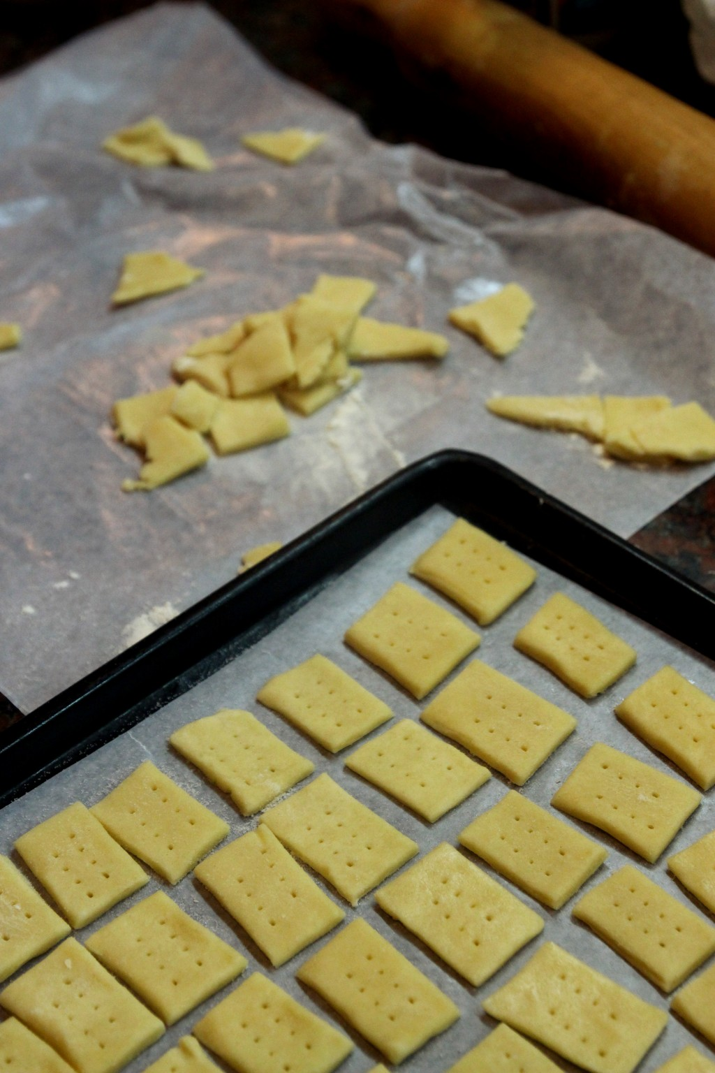 Parmesan Cream Crackers5