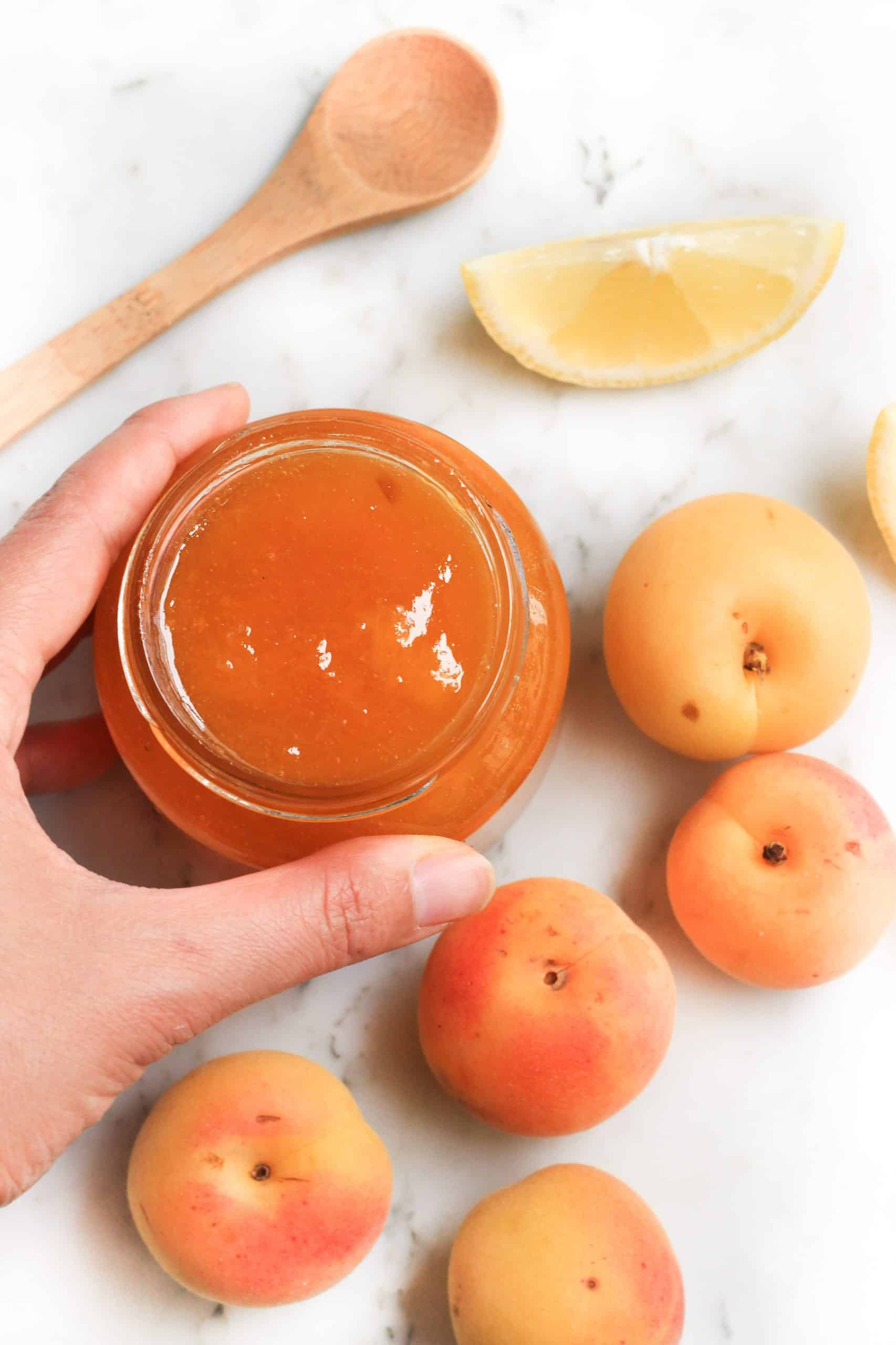 Hand holding an open jar of jam surrounded by fresh apricots.