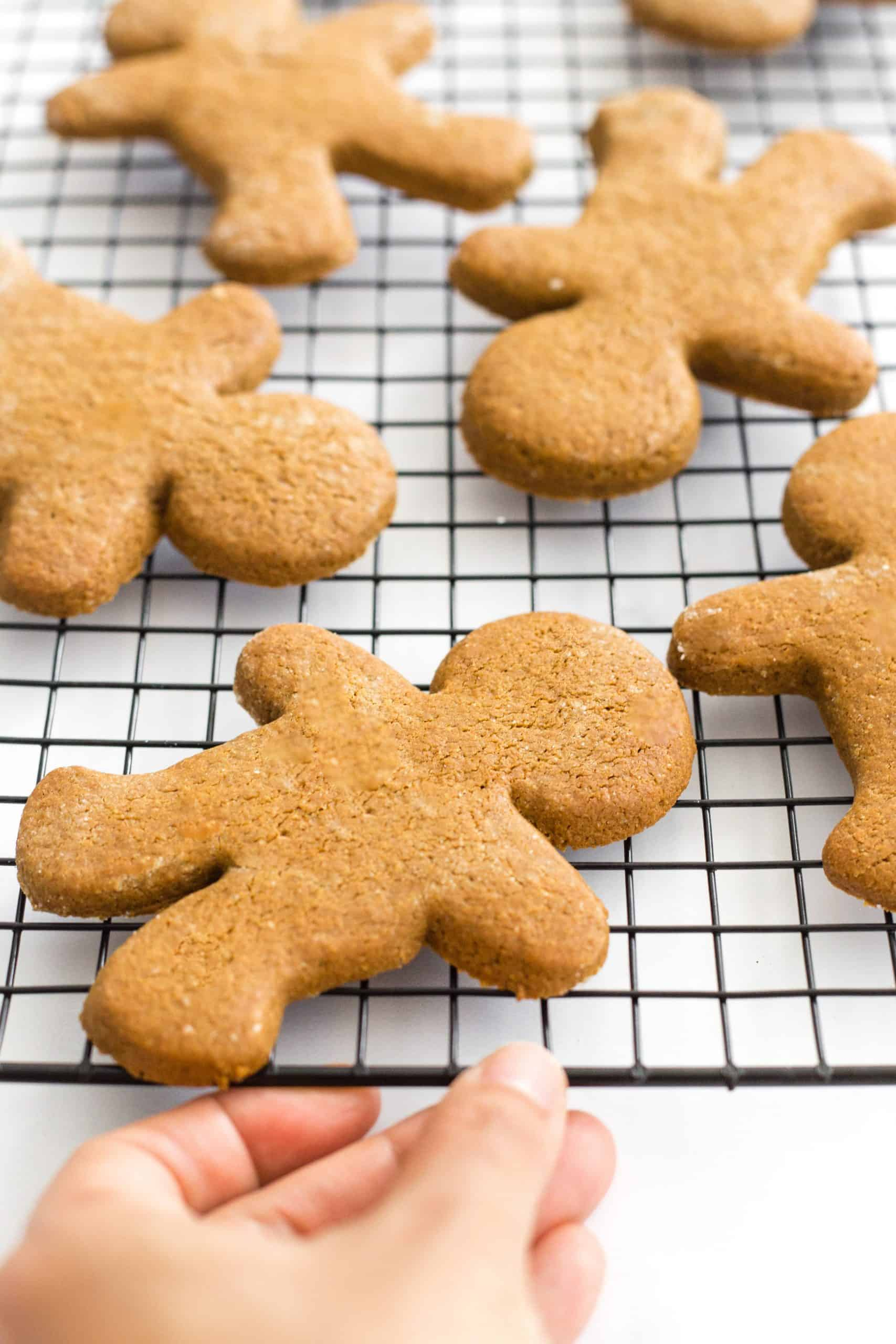 Hand holding a rack of gingerbread cookies.