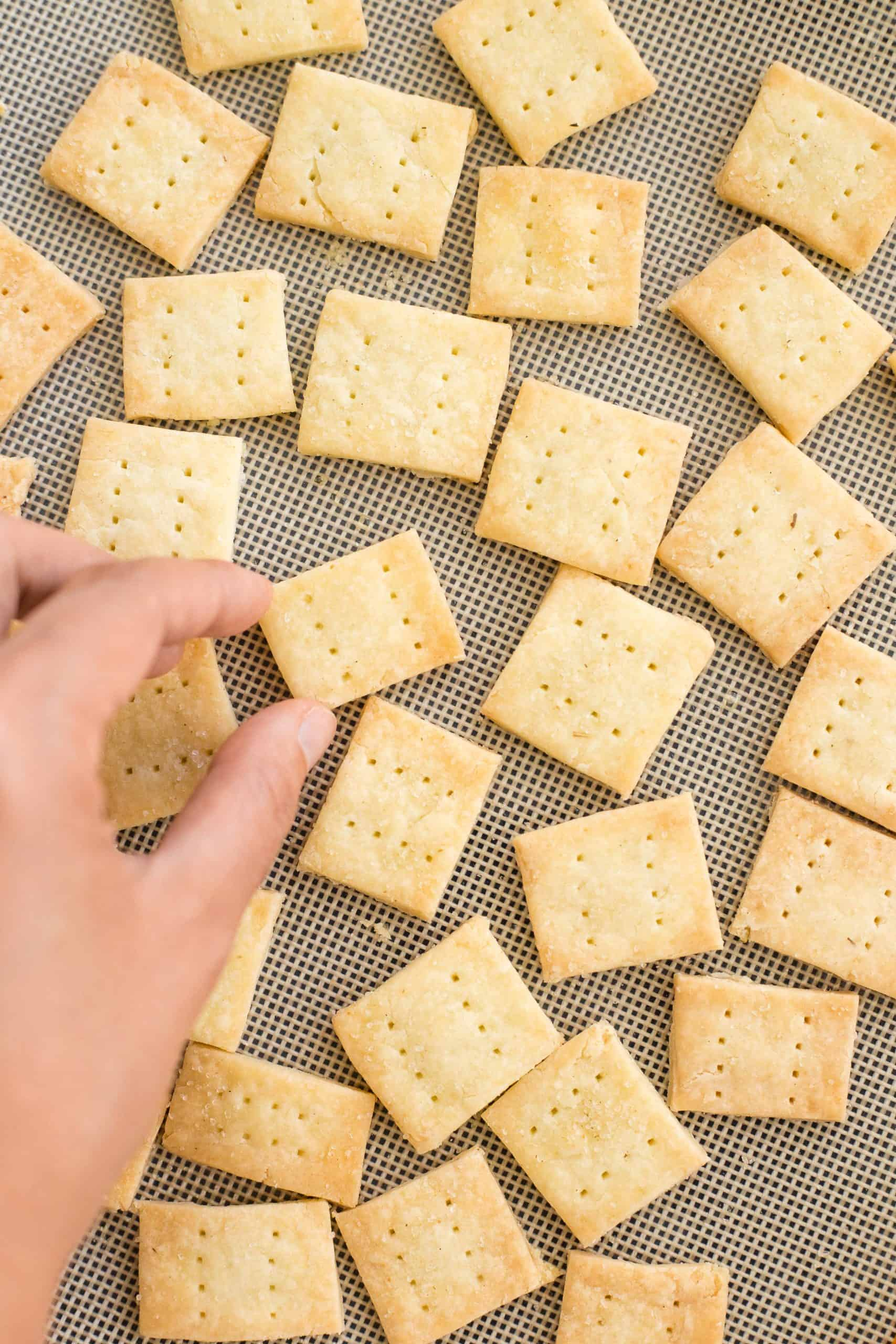 Reaching for a cracker on a silpat-lined baking sheet.