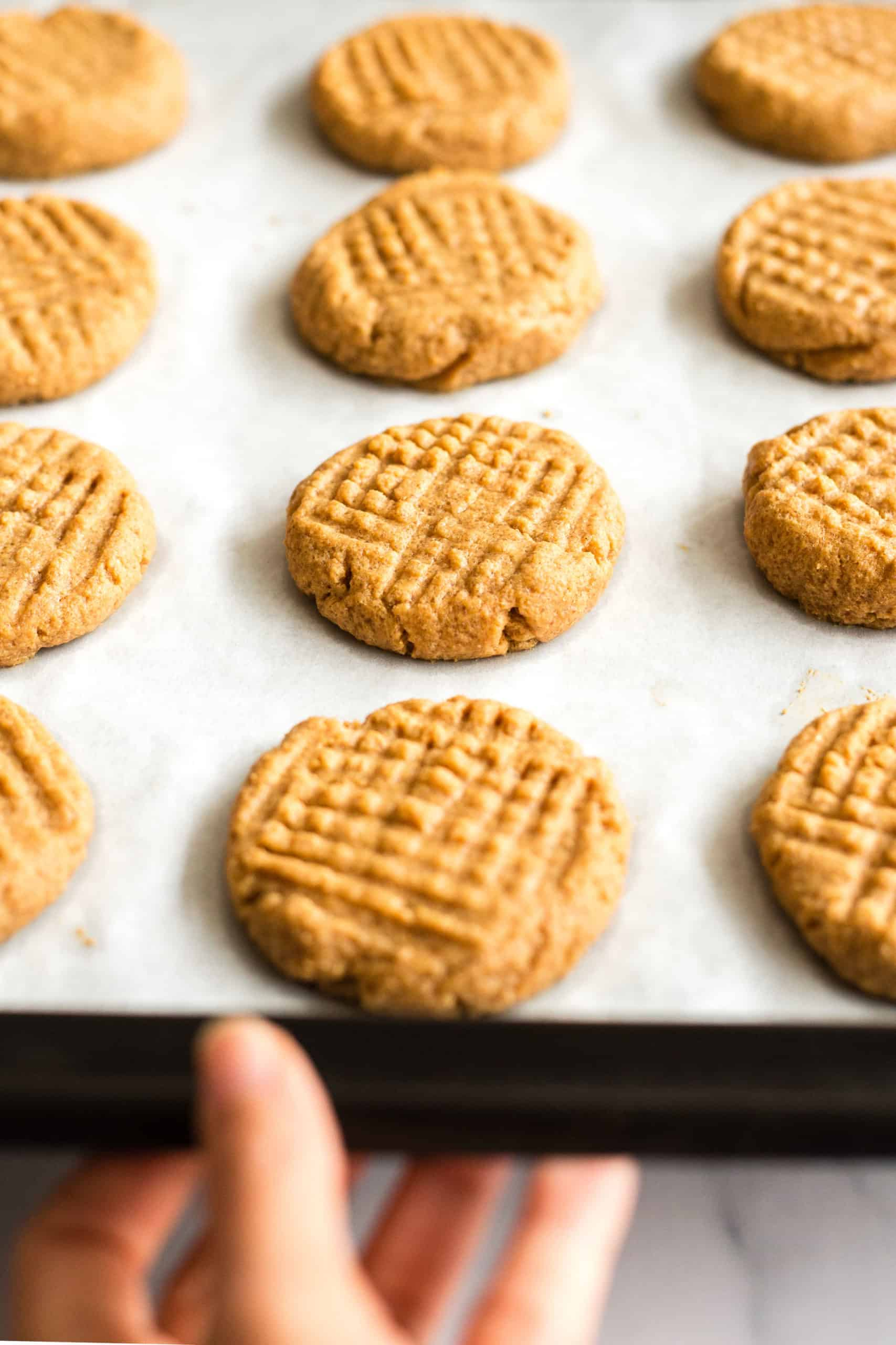 Hand holding a baking sheet full of freshly baked flourless peanut butter cookies.