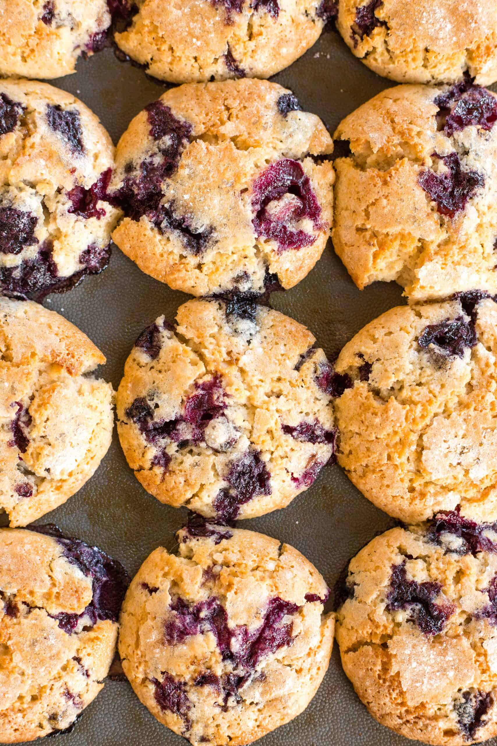 Top down image of gluten-free blueberry muffins in muffin mold.