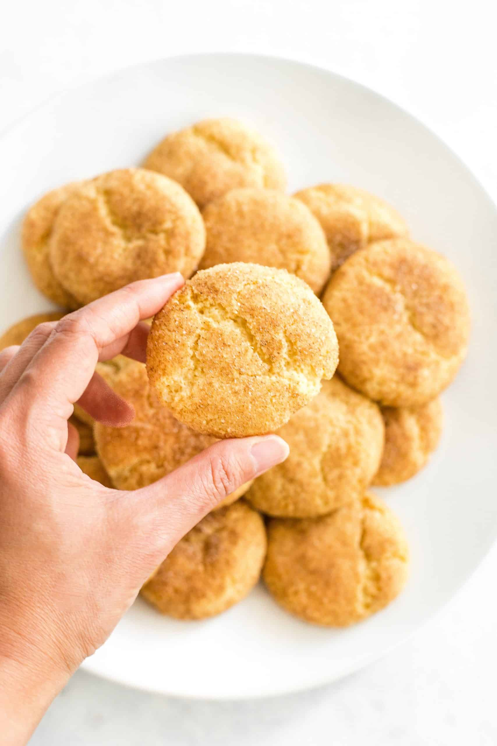 Hand holding up a snickerdoodle cookie.