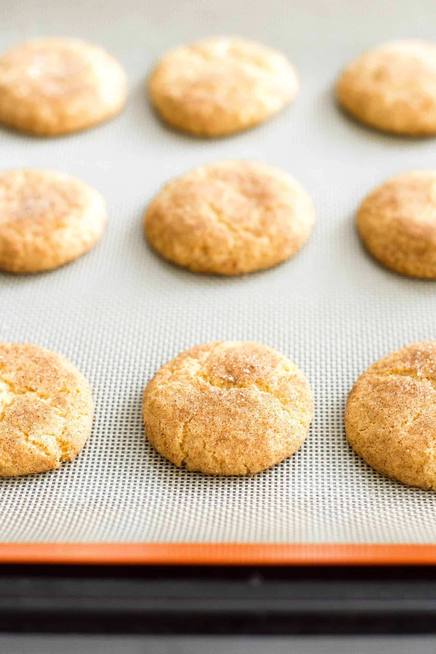 Freshly baked snickerdoodle cookies on a baking sheet.